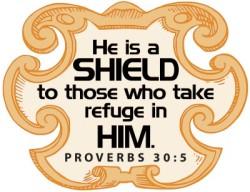 shield_8794c (2)